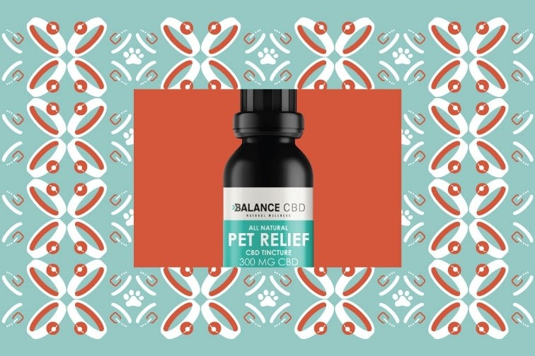 Know The Reasons Of Using CBD For Dogs As A Supplement
